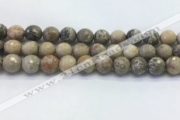 CAA3965 15.5 inches 14mm faceted round chrysanthemum agate beads