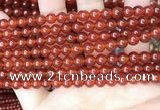 CAA4947 15.5 inches 6mm round red agate beads wholesale