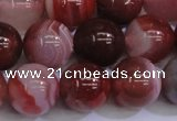 CAG6113 15.5 inches 10mm round south red agate gemstone beads