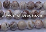 CAG6660 15.5 inches 4mm round Mexican crazy lace agate beads