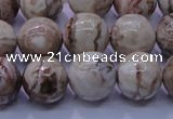 CAG6663 15.5 inches 10mm round Mexican crazy lace agate beads