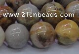 CAG6675 15.5 inches 14mm round natural crazy lace agate beads