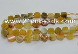 CAG7350 15.5 inches 14*15mm - 16*18mm octagonal dragon veins agate beads