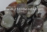 CAG737 15.5 inches 10*14mm rectangle botswana agate beads wholesale