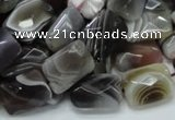 CAG759 15.5 inches 10*14mm faceted rectangle botswana agate beads
