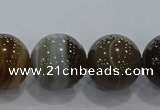 CAG9207 15.5 inches 16mm round line agate gemstone beads