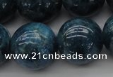 CAP405 15.5 inches 14mm round A grade natural apatite beads