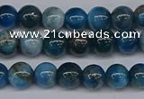 CAP411 15.5 inches 6mm round apatite gemstone beads wholesale