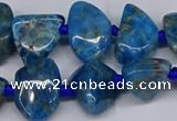 CAP532 15.5 inches 10*12mm - 16*22mm freeform apatite beads