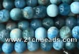 CAP576 15.5 inches 4mm round apatite beads wholesale