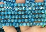 CAP606 15.5 inches 6mm round natural apatite gemstone beads