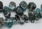 CAP73 15.5 inches 10*20mm nugget dyed apatite gemstone beads wholesale