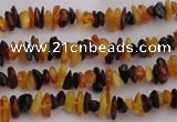 CAR205 32 inches 3*5mm natural amber chips beads wholesale