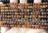 CAR215 15.5 inches 5mm round natural amber beads wholesale