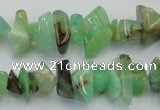 CAU407 15.5 inches 4*8mm - 6*14mm Australia chrysoprase chips beads