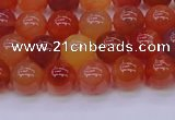 CBC413 15.5 inches 10mm AA grade round orange chalcedony beads