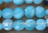 CCB553 15.5 inches 4mm faceted coin amazonite beads wholesale