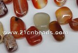 CCH333 15.5 inches 10*15mm red agate chips gemstone beads wholesale