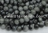 CEE02 15.5 inches 6mm round eagle eye jasper beads wholesale