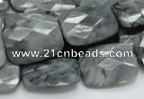CEE34 15.5 inches 15*20mm faceted rectangle eagle eye jasper beads