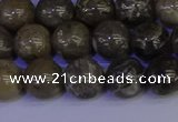 CFC213 15.5 inches 10mm round grey fossil coral beads wholesale