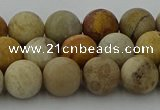 CFC222 15.5 inches 8mm round matte fossil coral beads wholesale