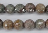 CGG15 15.5 inches 12mm faceted round ghost gemstone beads wholesale