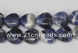 CHG11 15.5 inches 10*10mm heart sodalite gemstone beads wholesale