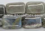 CLB124 15.5 inches 18*25mm rectangle labradorite gemstone beads wholesale