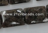 CLB425 15.5 inches 18*25mm faceted rectangle grey labradorite beads