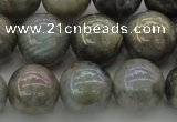 CLB605 15.5 inches 14mm round AB-color labradorite beads