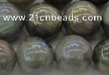 CLB608 15.5 inches 20mm round AB-color labradorite beads