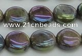 CLB635 15.5 inches 10mm flat round AB-color labradorite beads