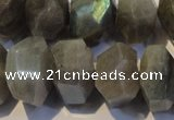 CLB701 15.5 inches 12*22mm - 14*24mm faceted nuggets labradorite beads
