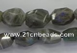 CLB766 15.5 inches 10*14mm - 12*16mm faceted nuggets labradorite beads