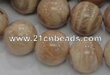 CMS05 15.5 inches 20mm round moonstone gemstone beads wholesale