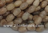 CMS06 15.5 inches 6*10mm rice moonstone gemstone beads wholesale