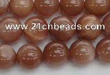 CMS1003 15.5 inches 10mm round AA grade moonstone gemstone beads