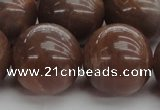 CMS1028 15.5 inches 20mm round AA grade moonstone gemstone beads
