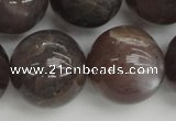 CMS149 15.5 inches 16mm round natural grey moonstone beads