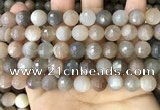 CMS1694 15.5 inches 10mm faceted round rainbow moonstone beads