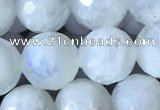 CMS1862 15.5 inches 10mm faceted round white moonstone gemstone beads