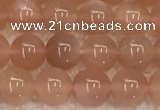 CMS1895 15.5 inches 6mm round moonstone gemstone beads