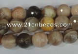 CMS572 15.5 inches 10mm faceted round moonstone beads wholesale