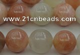 CMS893 15.5 inches 10mm round moonstone gemstone beads wholesale