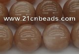 CMS935 15.5 inches 14mm round A grade moonstone gemstone beads