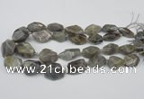 CNG1715 15.5 inches 15*20mm - 20*30mm nuggets labradorite beads