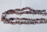 CNG2545 4*6mm � 6*10mm nuggets tourmaline beads wholesale