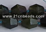 CNG2831 15.5 inches 13*15mm - 15*17mm faceted nuggets labradorite beads