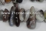 CNG316 15.5 inches 3*6mm - 5*22mm nuggets botswana agate beads